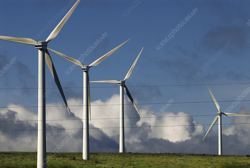 Wind turbines and electricity cables