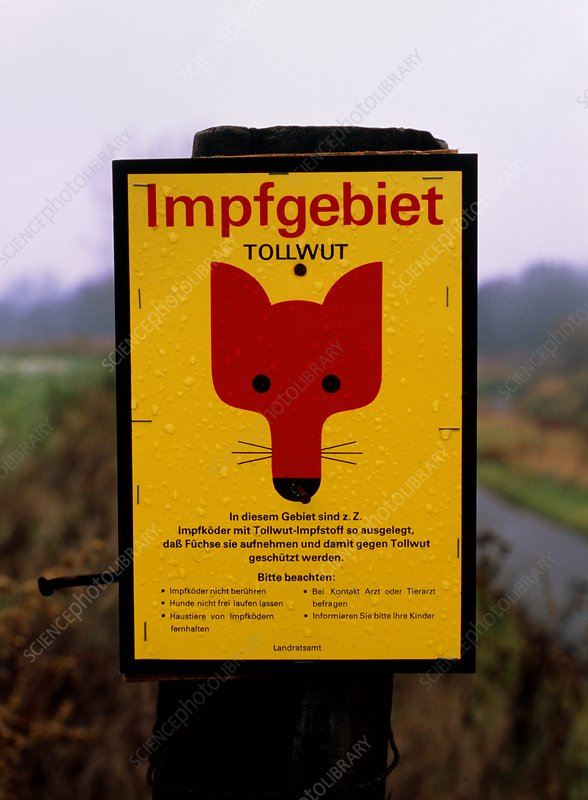 Rabies warning sign, Bitterfeld, Germany