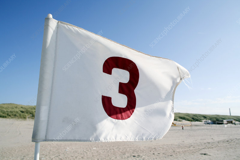 Numbered flag