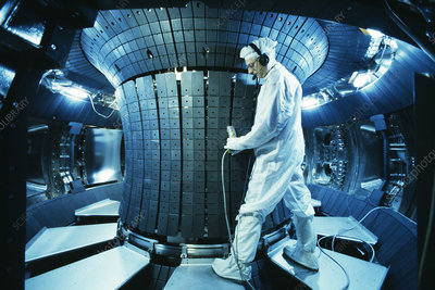 Fusion reactor maintenance