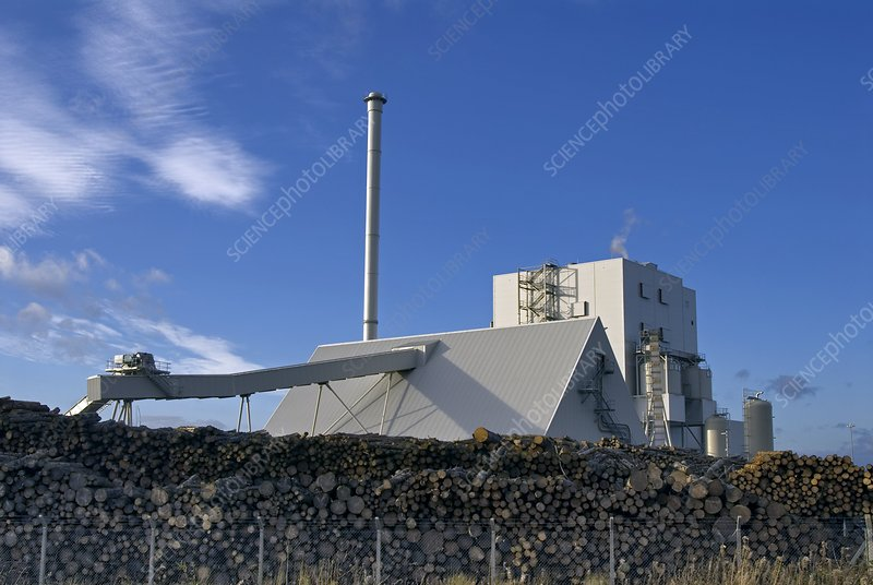 Steven's Croft Biomass Power Station