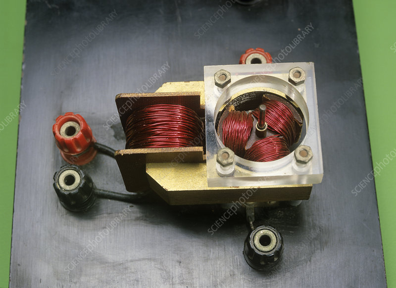 Electric motor coils