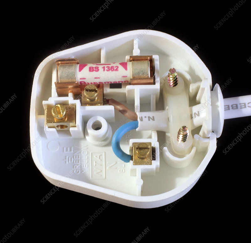 Inside an electrical plug
