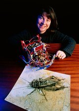 Barbara Webb with her robot cricket