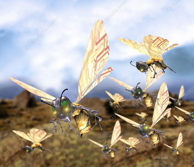 Insect robots