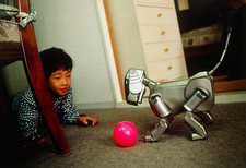 AIBO the robot dog