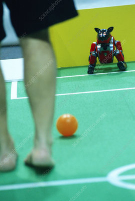 2003 Robocup goalkeeper being trained