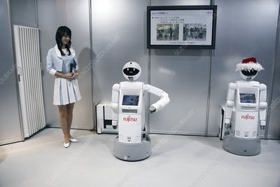 Domestic service robots, Japan