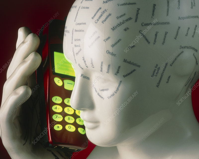 Phrenology head using a mobile telephone