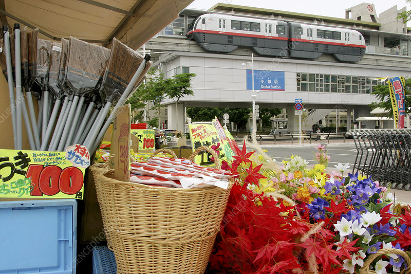 Japanese market and train
