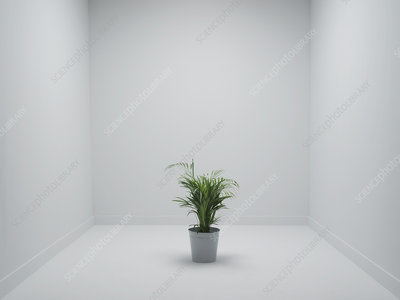 Office environment, conceptual image