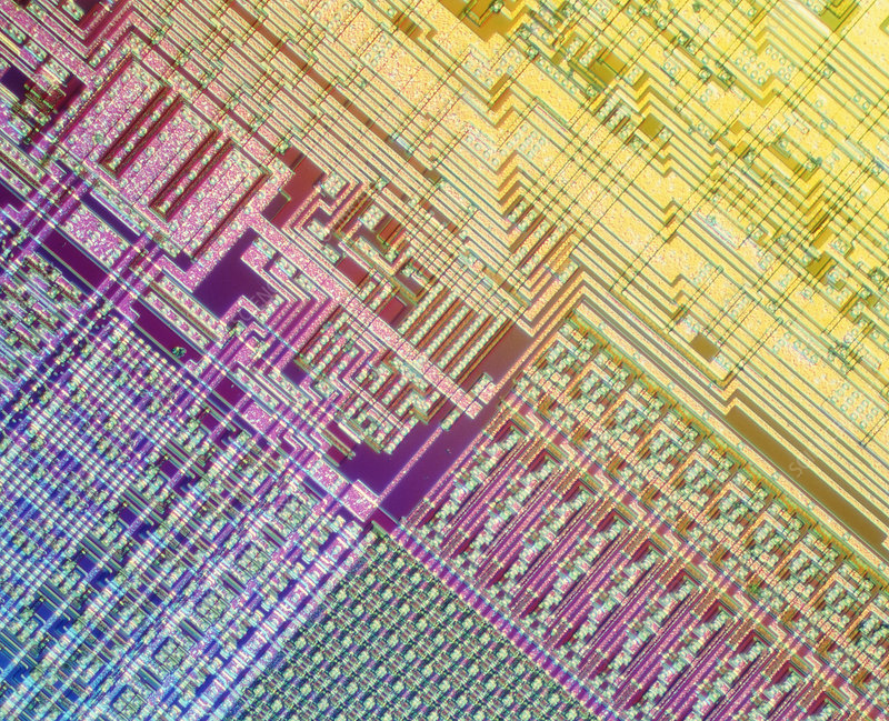 Surface of integrated circuit: light micrograph