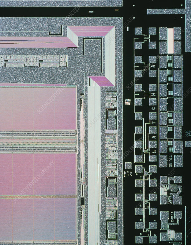 LM of microchip