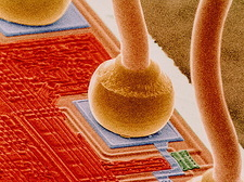 Coloured SEM of integrated circuit micro-wires.