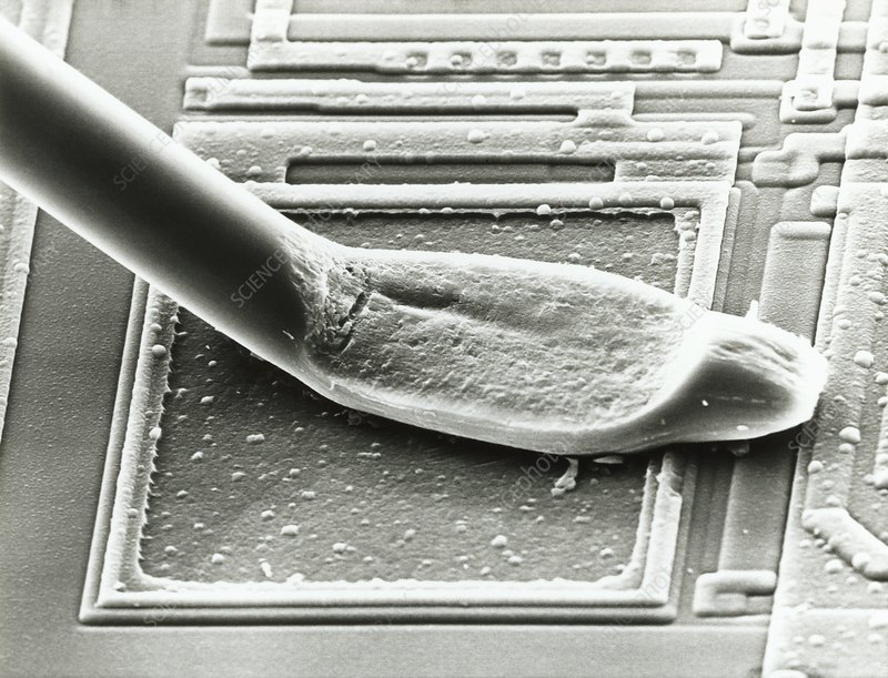 Electron micrograph of micro-wires bonded to chip