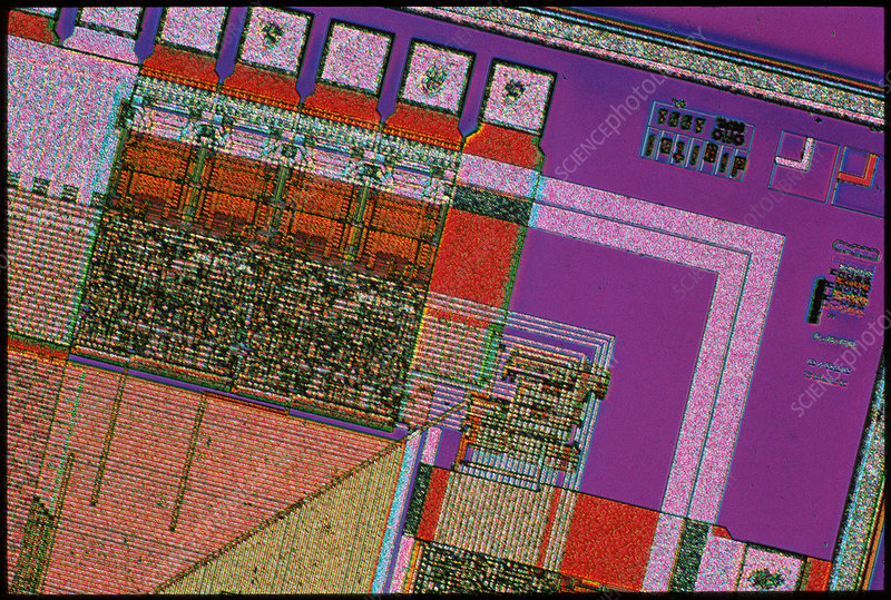 Light micrograph of an integrated circuit.