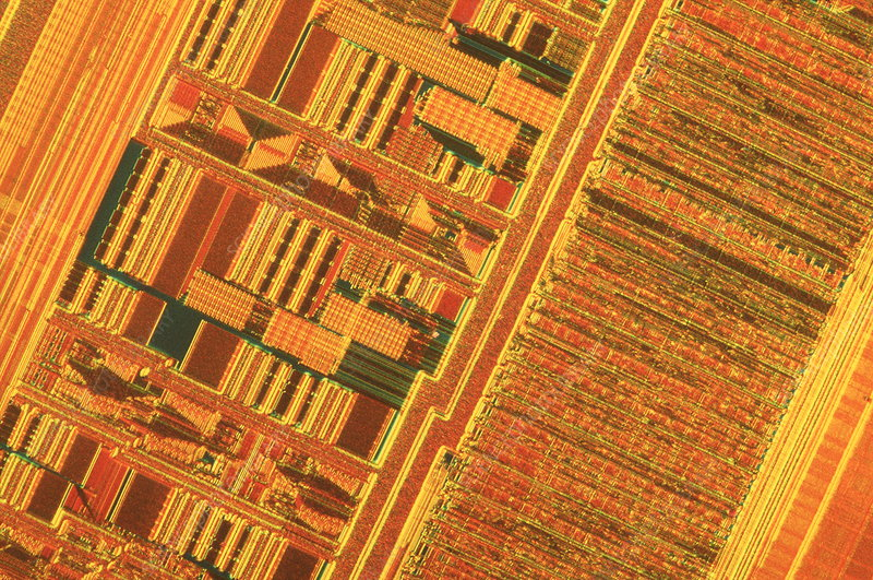Light micrograph of a Pentium computer chip