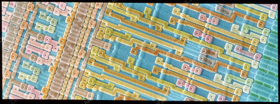 Coloured SEM of surface of an EPROM silicon chip