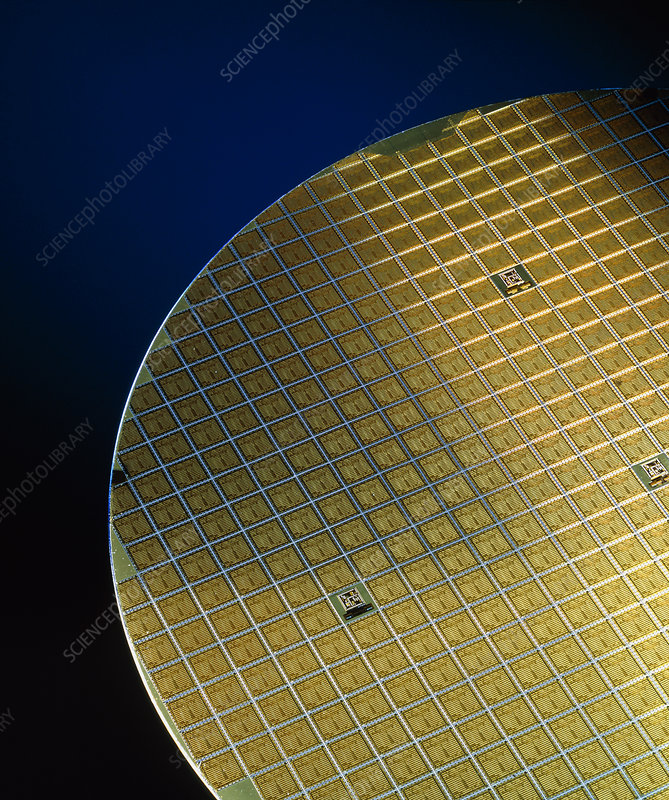 Silicon wafers with its chips