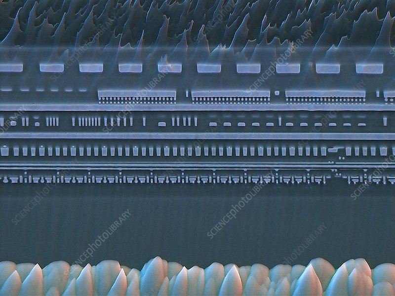 Microchip cross-section, SEM