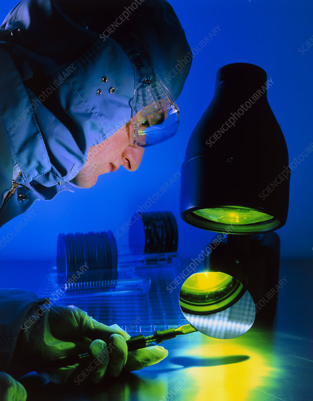 Technician inspecting silicon wafers
