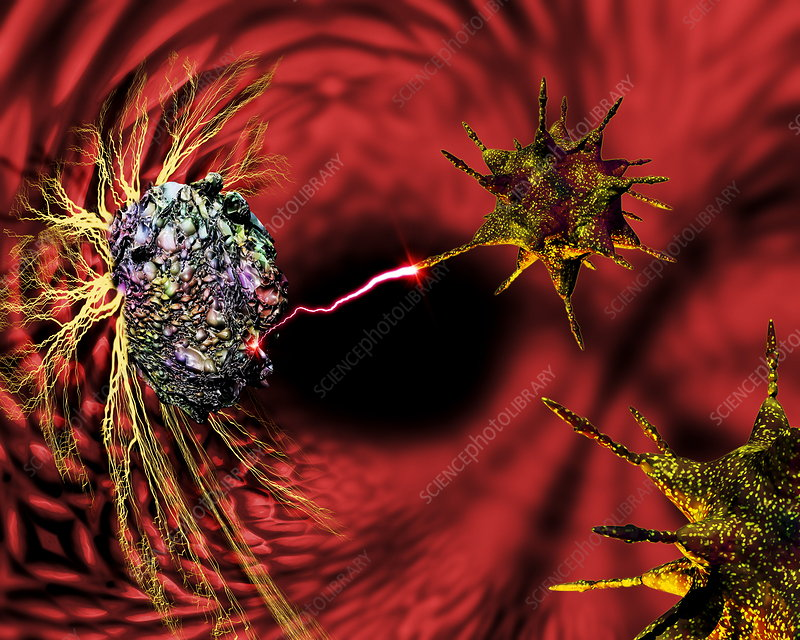 Nanorobots fighting cancer