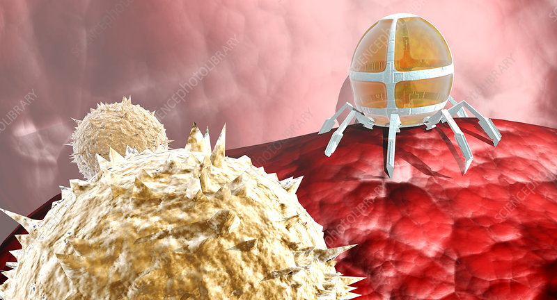 Nanorobot with blood cells