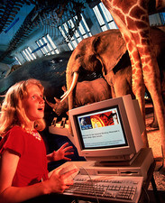 Girl uses the internet at Natural History Museum