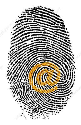 Artwork of e-mail address '@' sign & a fingerprint