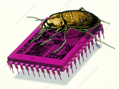 Artwork of millennium bug with beetle on microchip