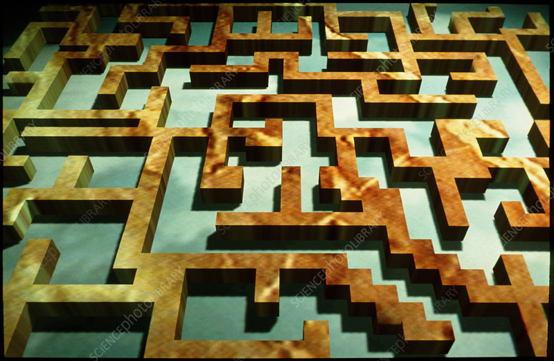 Computer artwork of a three-dimensional maze