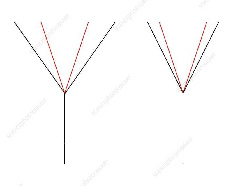 Angle illusion