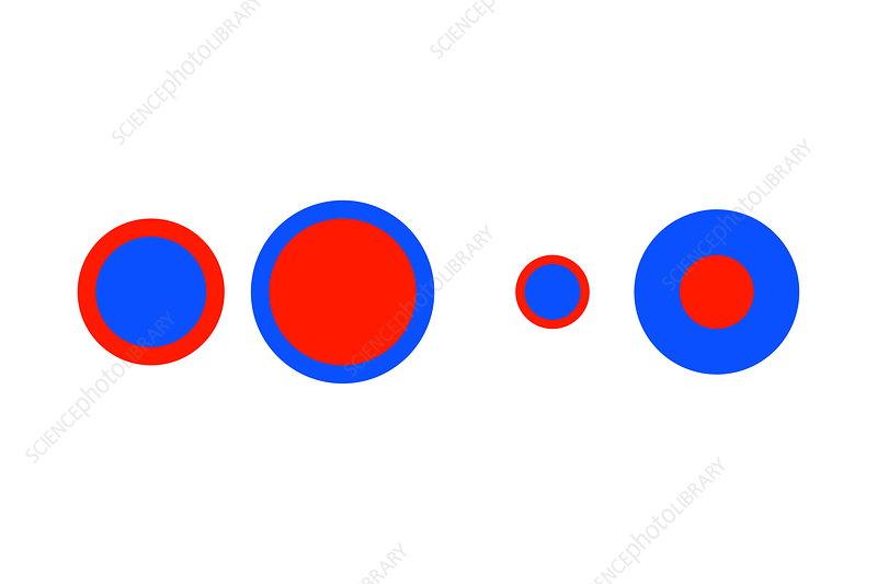 Delboeuf illusion