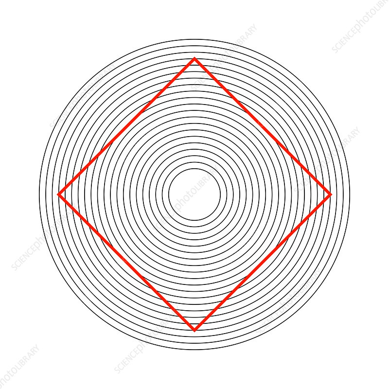 Ehrenstein illusion, square in circles