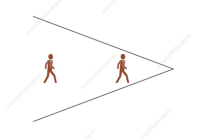 Ponzo's illusion