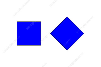 Square illusion - orientation