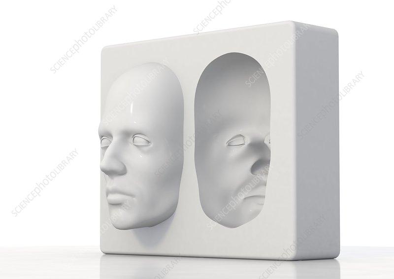 Hollow-face illusion,artwork