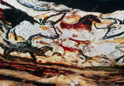 Virtual reality screen display of Lascaux Cave