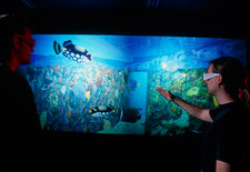 Virtual reality tank of the Lisbon Oceanarium