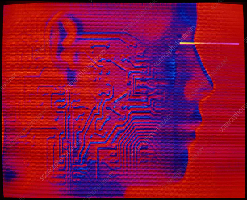 Artificial intelligence: circuit & human head