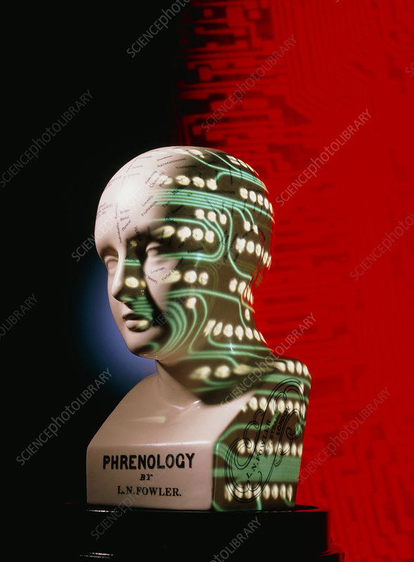 Phrenology head with circuits projected