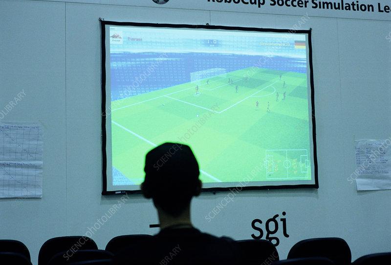 Simulation league at Robocup 2003