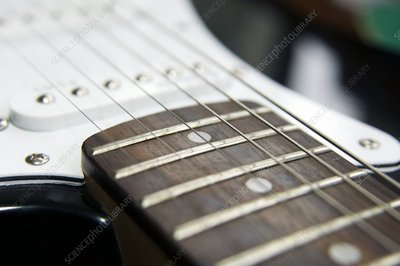 Frets on an electric guitar
