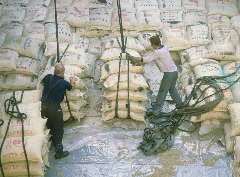 Freight workers unload sacks of coffee from a ship