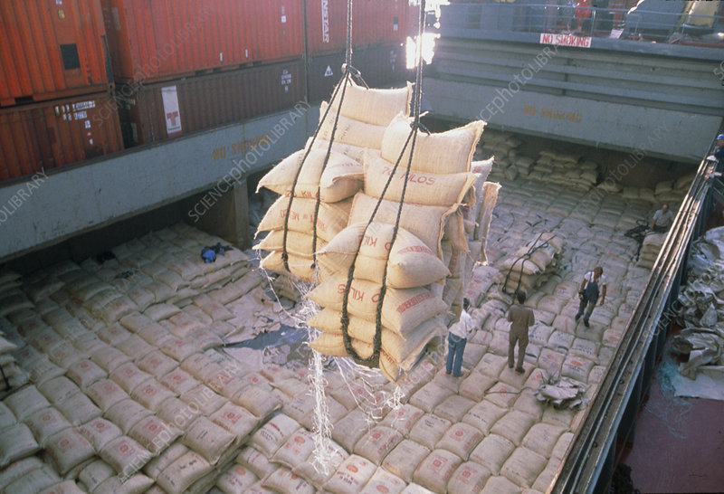 Crane unloads sacks of coffee from a ship