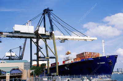 Docked cargo ship loading via crane, Florida