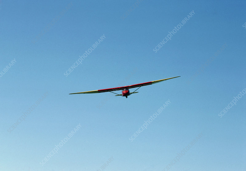 Glider in free flight