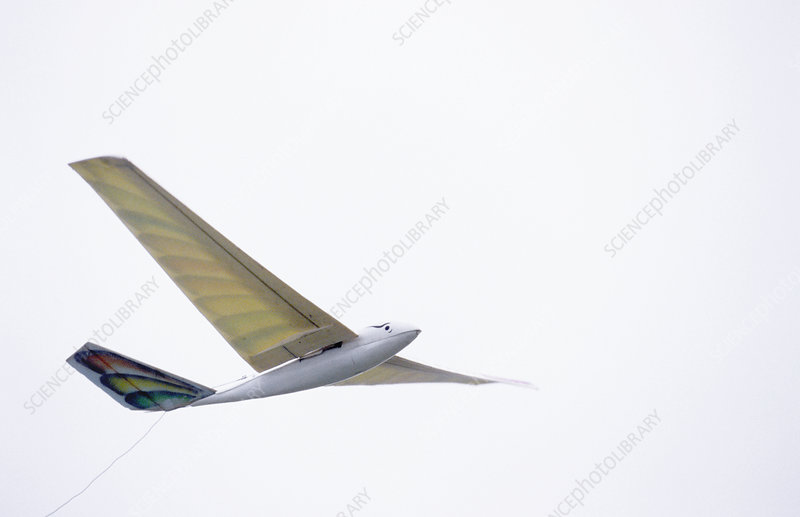 Ornithopter flapping wing aircraft