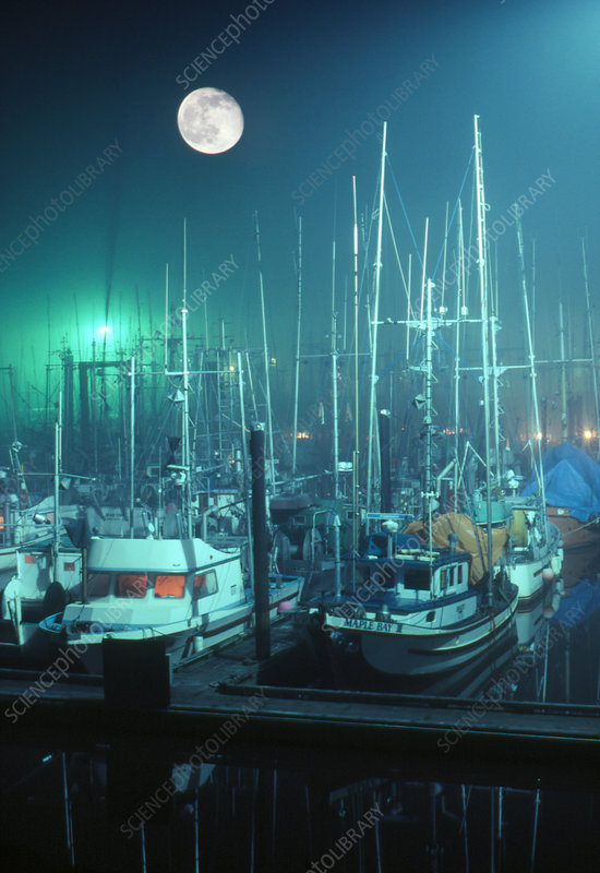 Moon setting over fishing boats in harbour