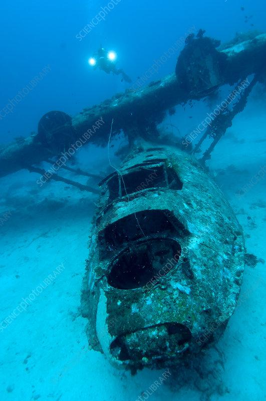 Catalina plane wreck